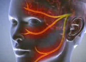 a fityma bezárja a fejét az erekció során